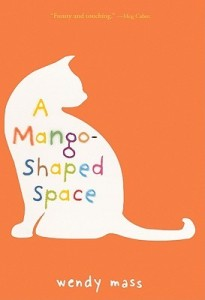 mango-shaped-space
